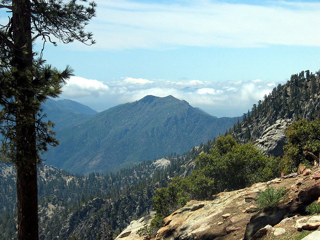 California Route 36   Scenic Motorcycle Rides