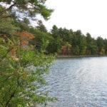 Concord Loop Walden Pond