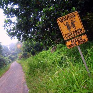 Road Sign, Odd